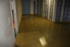 CCPA Polished Concrete
