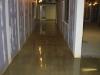 CCPA Polished Concrete